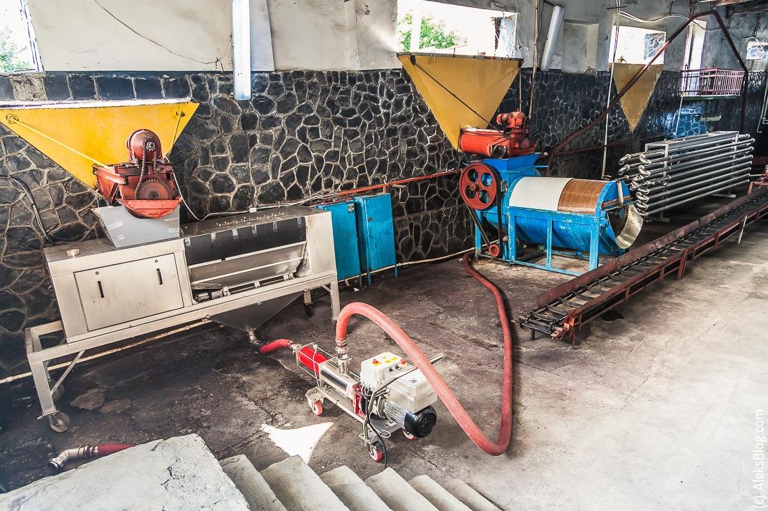 Завод Киндзмараули в Грузии