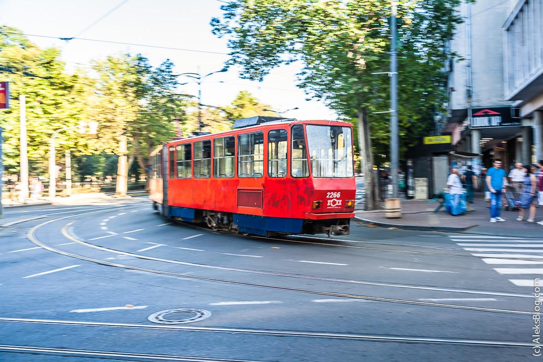 belgrad-70
